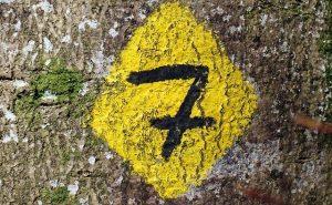 Les 7 règles pour réussir ses flyers