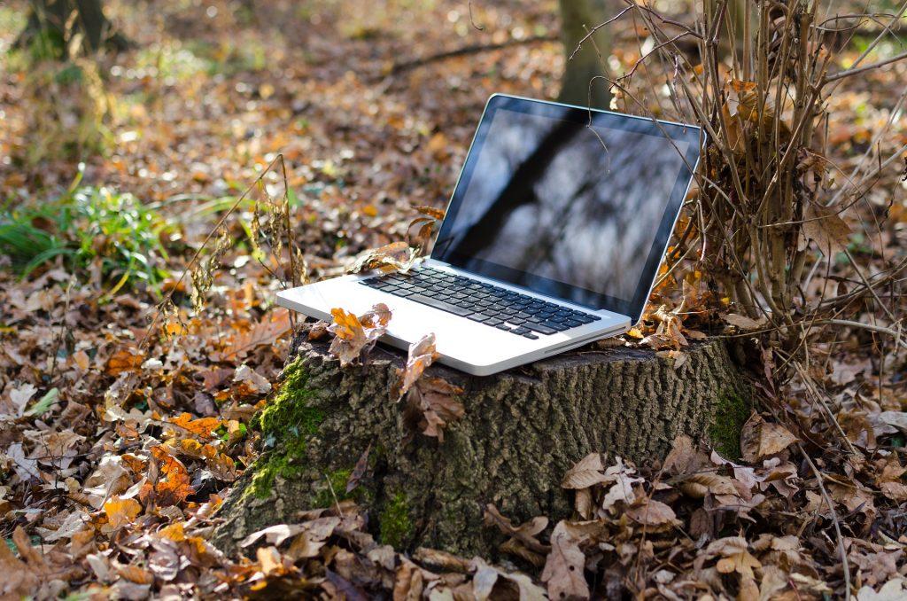 web et ecologie